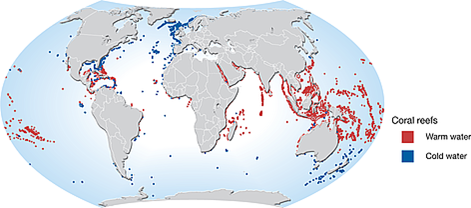 red shows the distribution of warm water coral reefs
