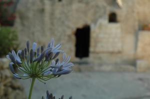 garden tomb 557292_94217112 M Nota