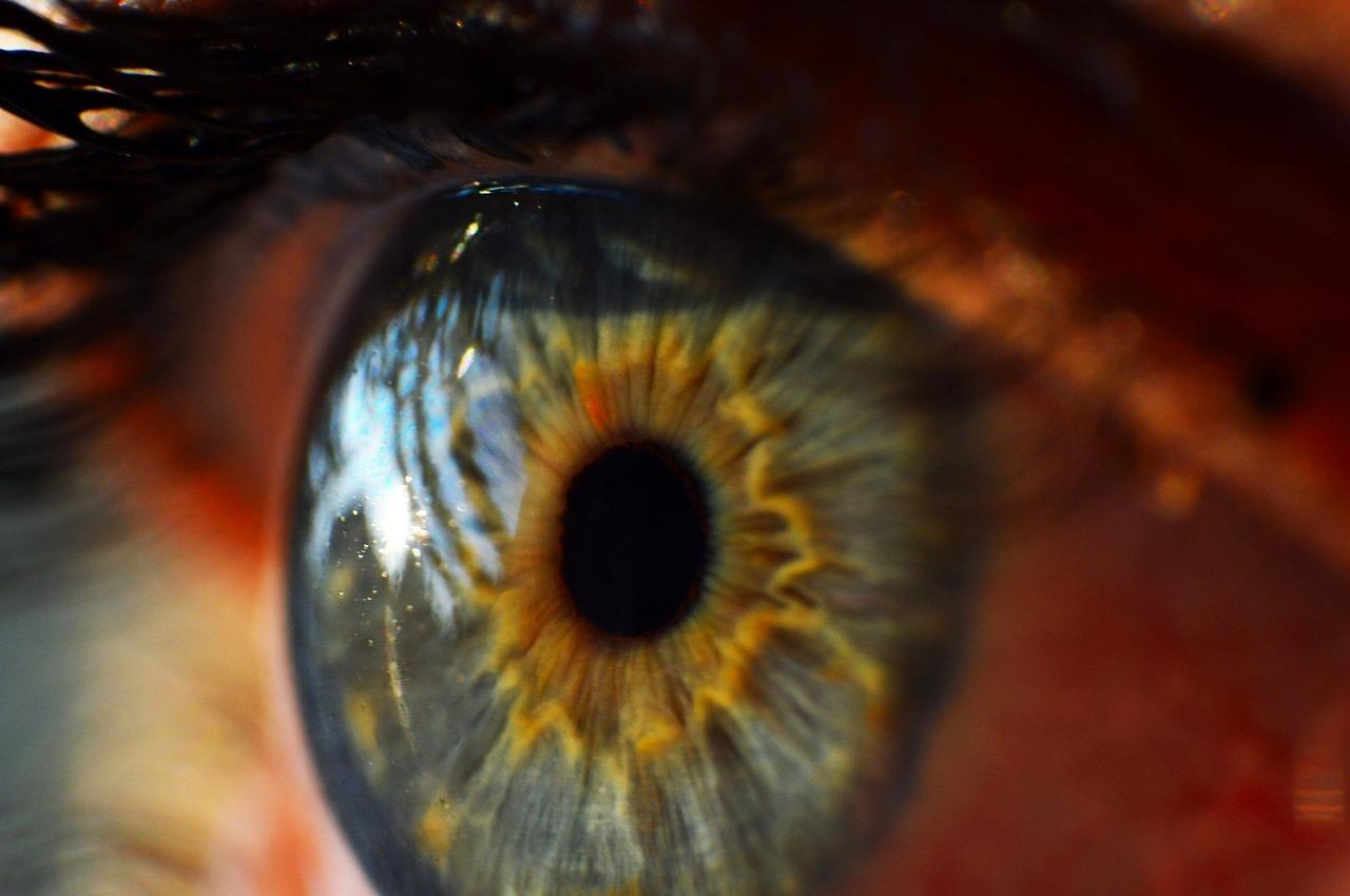 human-eye-995168_1280