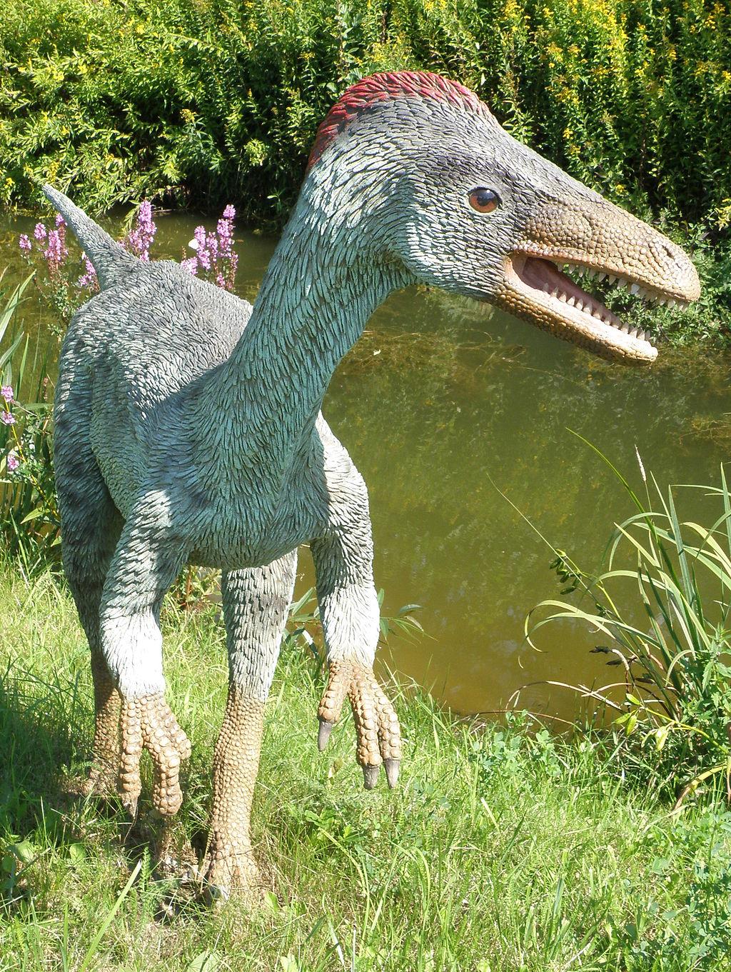 Troodon_-_JuraPark_Baltow_(1)