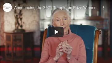 Jane Goodall Awarded 2021 Templeton Prize