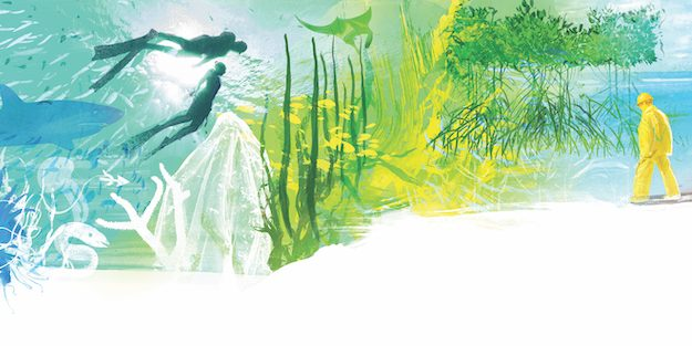 Wonders of the Living World: Margaret Miller, Marine Biologist – conservation and hope